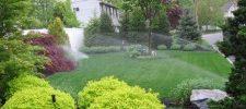 Lawn Sprinkler Service Start-up
